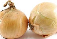 Oignon, aliment d'origine végétale riche en calcium